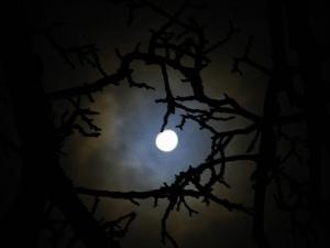 The_Dark_Night_Sky____by_StormyGhost