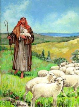 shepherd_good