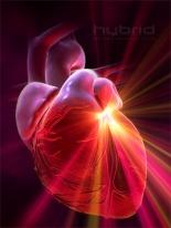 heart_attack15